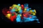 Video - Farbmagneten in Zeitlupe beobachten