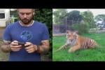 Video - Hoppalas mit Drohnen