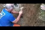 Video - Heldenhafte Rettung von verschütteten Hunden