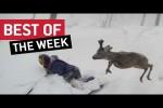 Video - Die besten Videos der 2. März-Woche