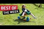 Video - die besten Videos der letzten August-Woche