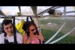 Video - Katze im Flugzeug