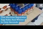 Video - Maschinelles Eier trennen