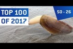 Video - Top 100 Viral Videos des Jahres 2017 - Teil 3