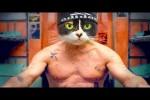 Video - 5 Tipps für den Knast