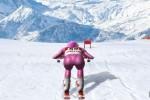 Spiel - Slalom Ski Simulator