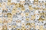 Spiel - Find the Pug