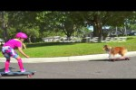 Video - Zwei Skateboard-Freunde