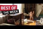 Video - die besten Videos der 3. März-Woche