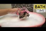 Video - Es ist Badezeit