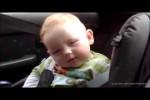 Video - Alle Babys ...