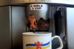 Video - 2 Mädels in eine Tasse Kaffee