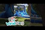 Video - Labrador liebt die Wasserrutsche