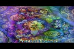 Video - Morphing Beautiful Fractal Flowers