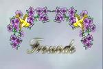 Video - Freunde