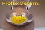 Video - Frohe Ostern